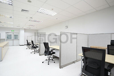 [Large Quantity Discount] GOF Office Partition Wall Room Divider Cubicle Office Cubicle Divider