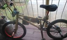 BARGAIN PRICE  MONGOOSE PROGRAM BMX TODAY ONLY SALE Bray Park Pine Rivers Area Preview