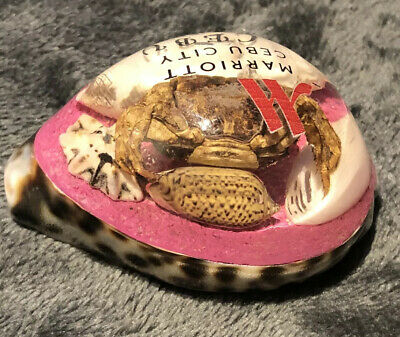 Cebu City Phillipines Marriott Encased Crab On Shell Souvenir Paper Weight