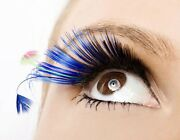Carton of False Lashes (9styles available) Redland Bay Redland Area Preview