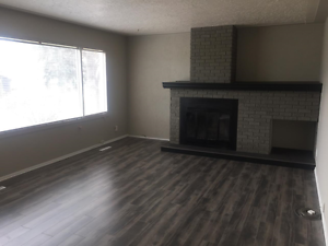 4 Bed/2 Bath Newly Renovated Bungalow With In-Law Suite!!! Edmonton Edmonton Area image 3