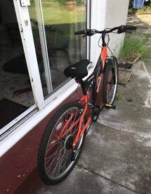 A1 Mountain Bike