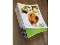 Dog Collection Magazines & Toys