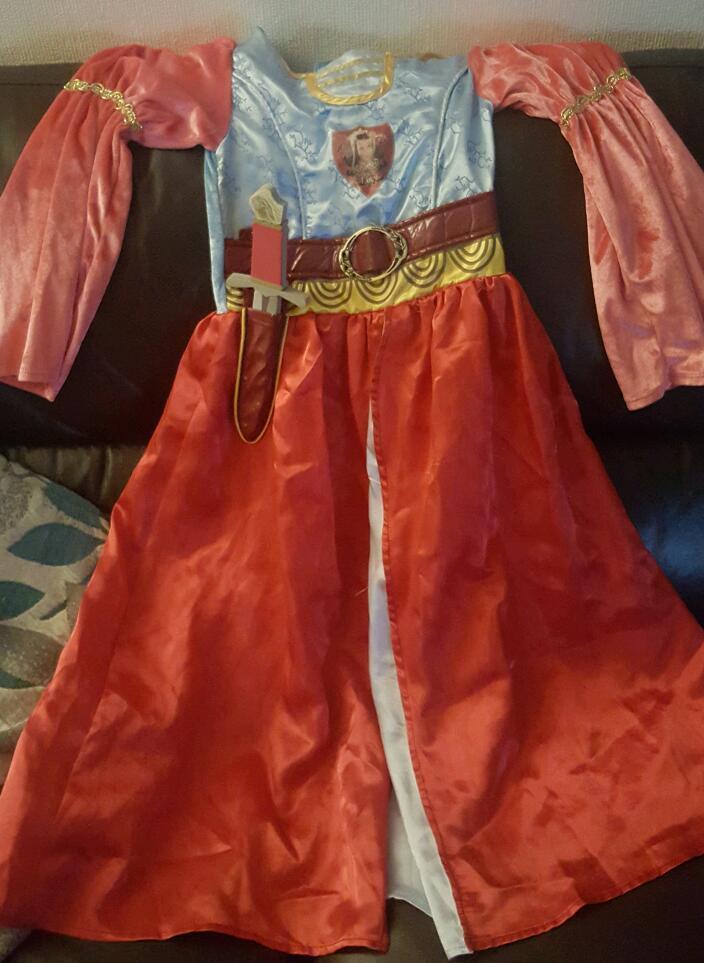 Disney Narnia Costume