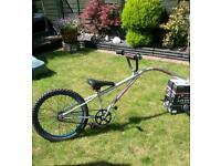 taggy bike
