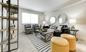 NEW 1BR NW Crystallina Suites | Pet Friendly & Walk In Closets
