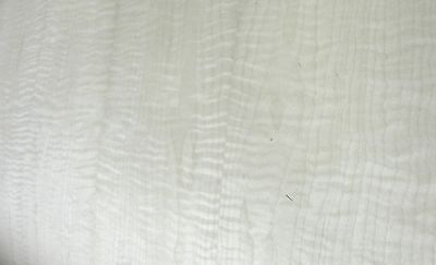 Curly Figured Maple Wood Veneer 24 X 48 With Paper Backer 140 Thickness Aaa