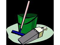 Honest hard working cleaner - £10/hr
