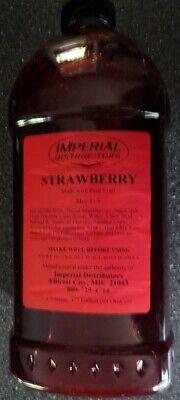 Strawberry Blender Slush Machine Margarita Fruit Mix Frozen Drinks