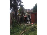 Martin's tree surgeon and Gardening London