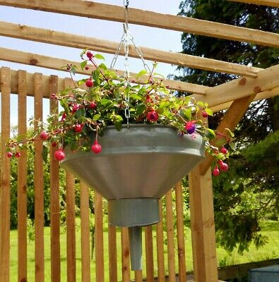 Vintage French metal funnel converted to hanging basket