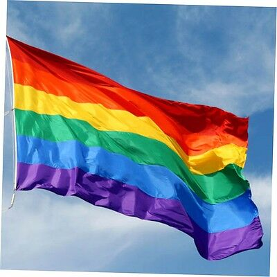 Rainbow Gay Lesbian Pride Banner Flag Outdoor Garden Polyester 150Heißer Verka&I