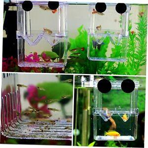 Fish Breeding Isolation Hanging Aquarium Accessories Incubator Box Tank GO