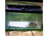 Fish tank 100litre