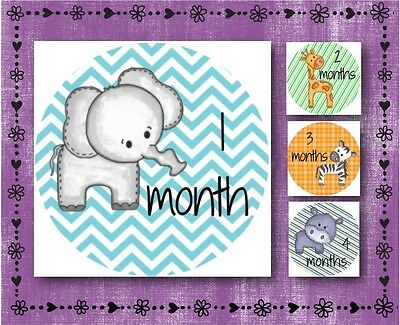 Baby Animal   Baby Milestone Stickers   Months 1 12   2 5  Round Glossy Labels