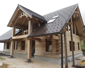 1160 Sqft Traditional Dove tailed log cabin kits - cottage