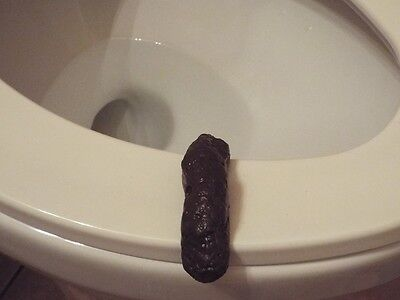 HILARIOUS FAKE HUMAN POOP TURD REALISTIC GROSS TOILET JOKES, GAGS AND PRANKS - Jokes Gags