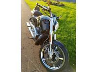 Harley Davidson vrscf v rod muscle