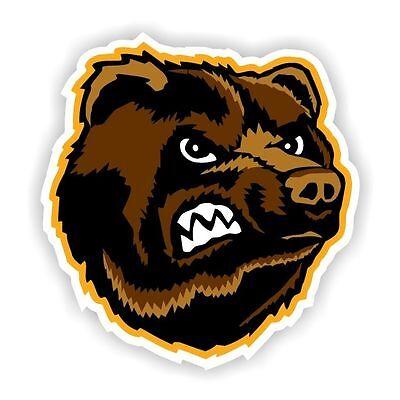 Boston Bruins  Decal / Sticker Die cut ()