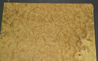 Myrtle Burl Raw Wood Veneer Sheet 15 X 16 Inches 150th   7655-39