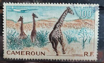 Cameroun 1953 SG261 100f Aircraft over giraffes USED