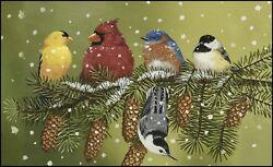 Toland Home Garden Snowy Friends 18 x 30 Inch Decorative Floor Mat Winter Bird