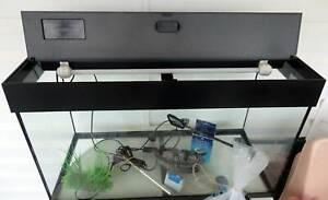 Fish Tank/Acquarium