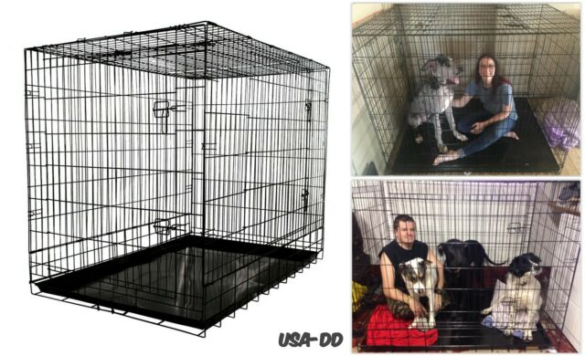 xxl folding dog crate wire metal puppy kennel cage large giant training houses - Collapsible Dog Crate