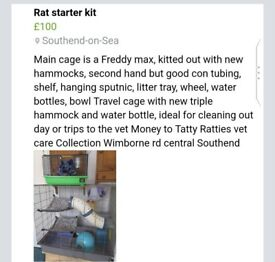 Rat starter kit, money to Tatty Ratties vet care