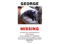 Happy Birthday George - still missing :(