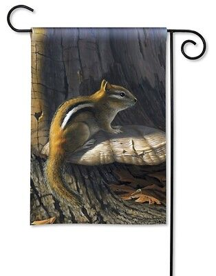 Fall Decorative Banner - CHIPMUNK Sitting in Woods Autumn Fall 12.5