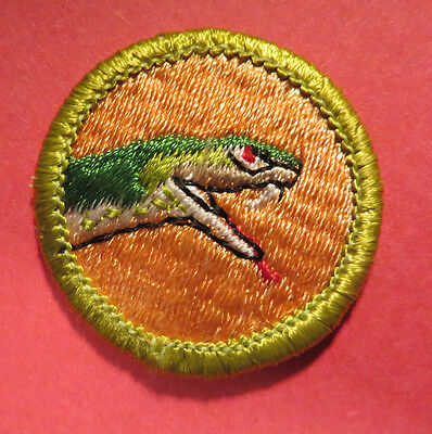 Boy Scout Merit Badge - Type H Plastic Back - Reptile Study
