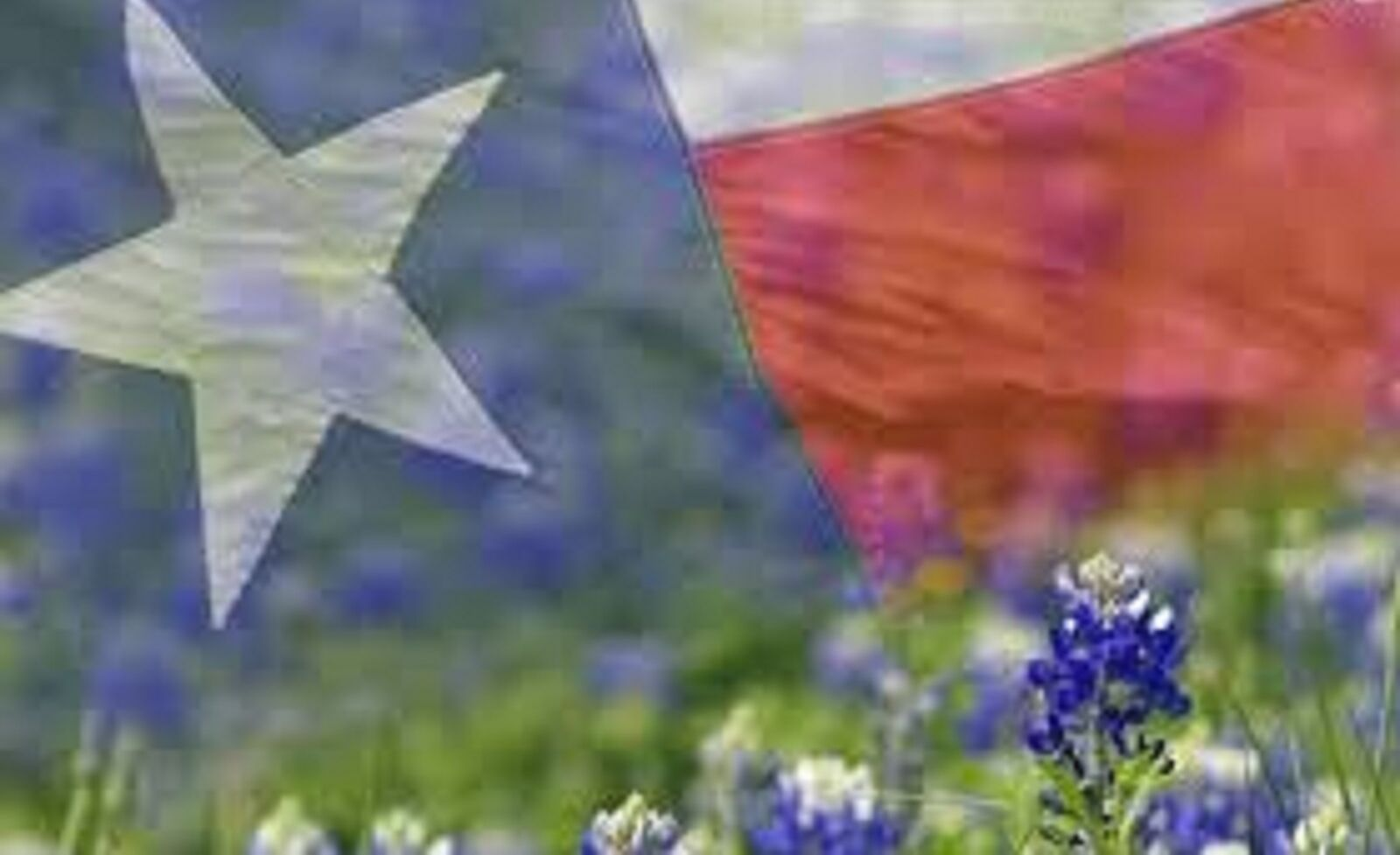 Texas T&T Handmade Soaps And More