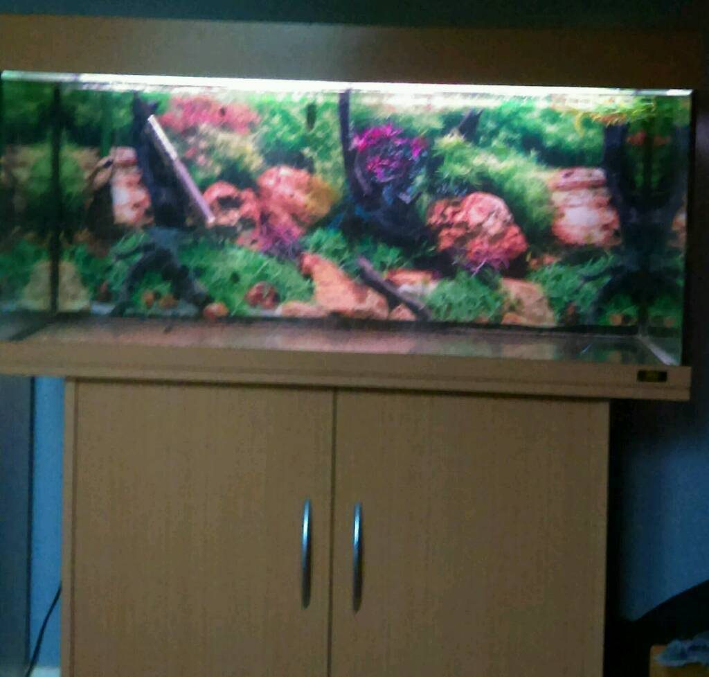 Juwel aquarium/fish tank