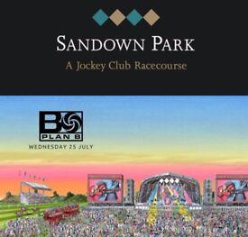 Tickets for Plan B gig @ Sandown Racecourse