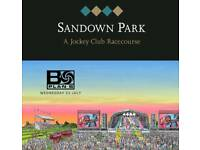 Tickets for Plan B gig @ Sandown Racecourse