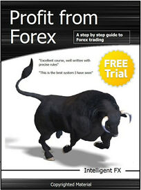 PROFESSIONAL FOREX TRADING COURSE: £14- FX guide book with unique currency trading system / strategy