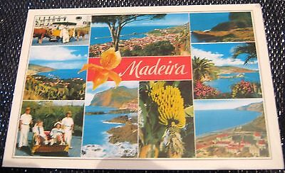 Portugal Madeira Multi-view - posted
