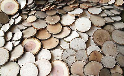 200 Astscheiben, Holzscheiben, Baumscheiben, Floristik, Bastel, Dekomaterial