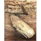 Moby Dick White Whale Drawing Watercolor 8.5 X 11 Best art print Herman Melville