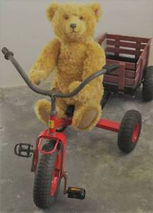"Kids ""Red Ace"" Trike with Wagon Cart Waratah Newcastle Area Preview"