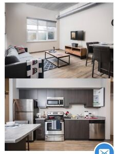 looking for a sublet!