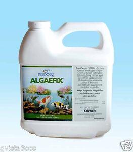 Algae Fix 64oz Fish Safe Control Water Garden Pond String Algaecide Algaefix