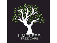 Limitless Tree Care