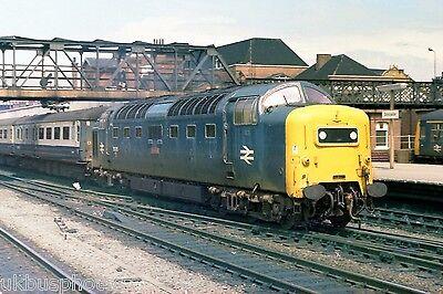 BRITISH RAIL Deltic 55010 withdrawn Doncaster 1982 Rail Photo
