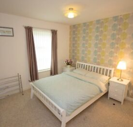 Ensuite Double Room to Let in Aberdeen City Centre