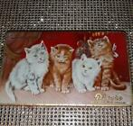 Langues de Chats  Droste Haarlem Holland