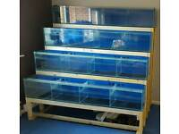 Shop display 4x fish tanks 16bays