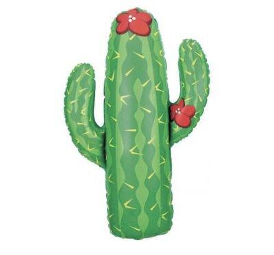 Cactus 41