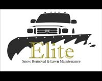 ELITE SNOW REMOVAL  (Oakville Only!!!)
